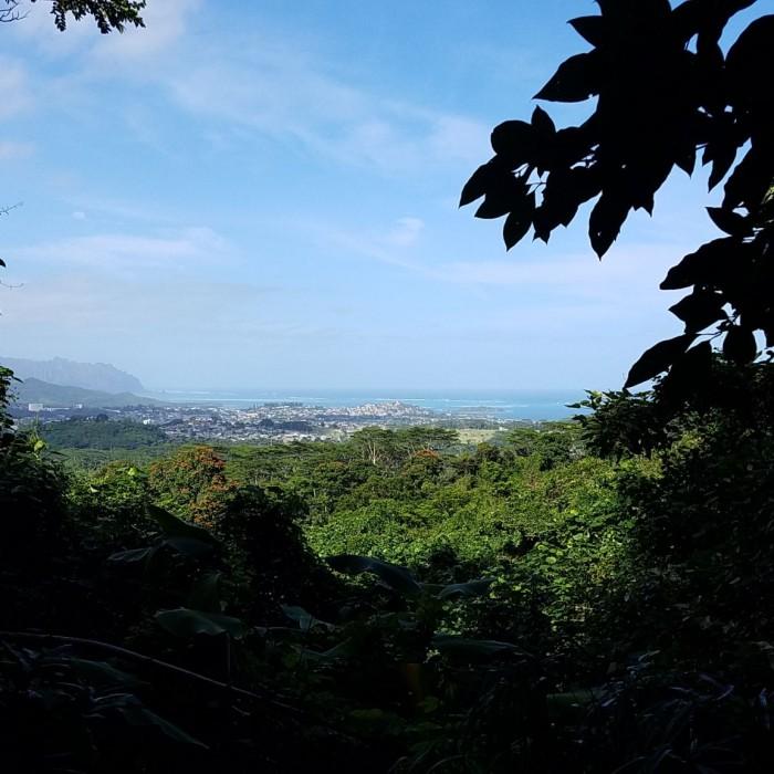 Likeke View