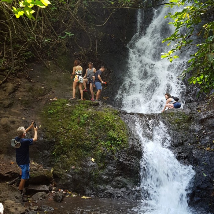 Ko'olau Waterfall