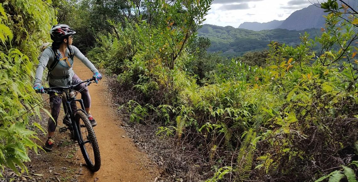 Single Track Mountain Biking