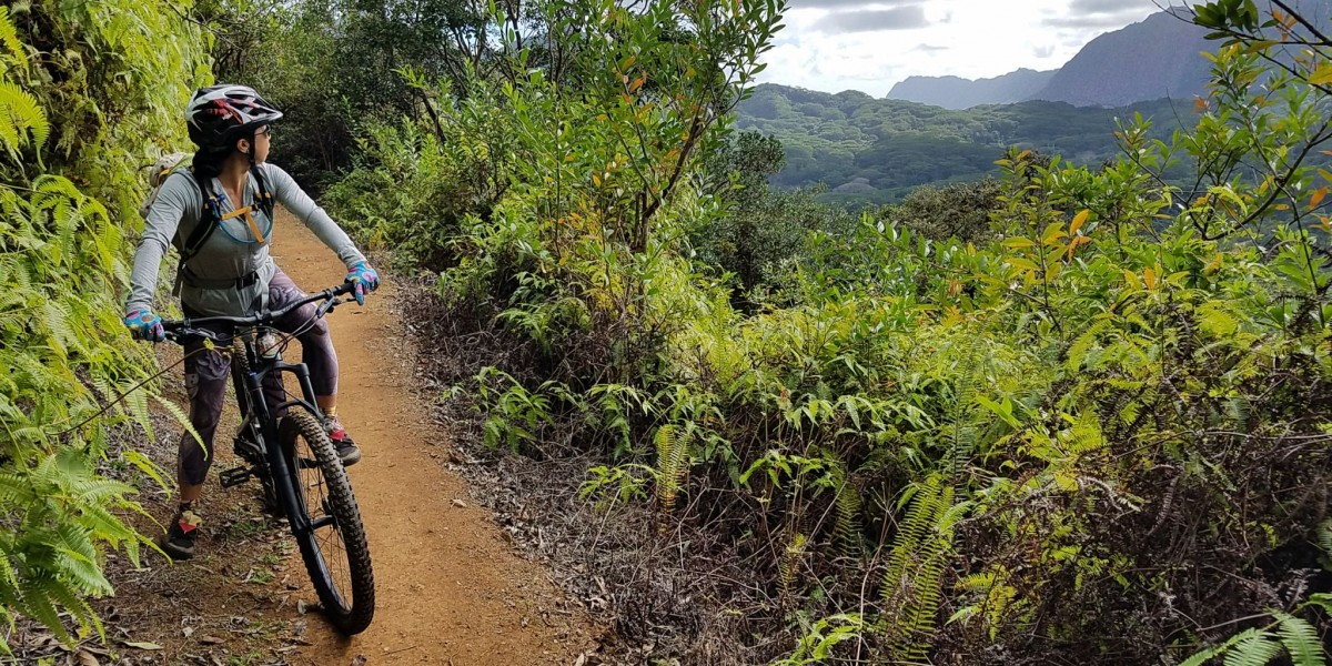 Bike Hawaii Tours - celebrating 20-yrs of Oahu Tours
