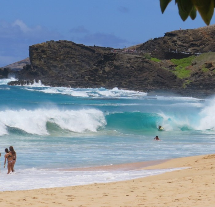 Sandy Beach: East Oahu Explorer