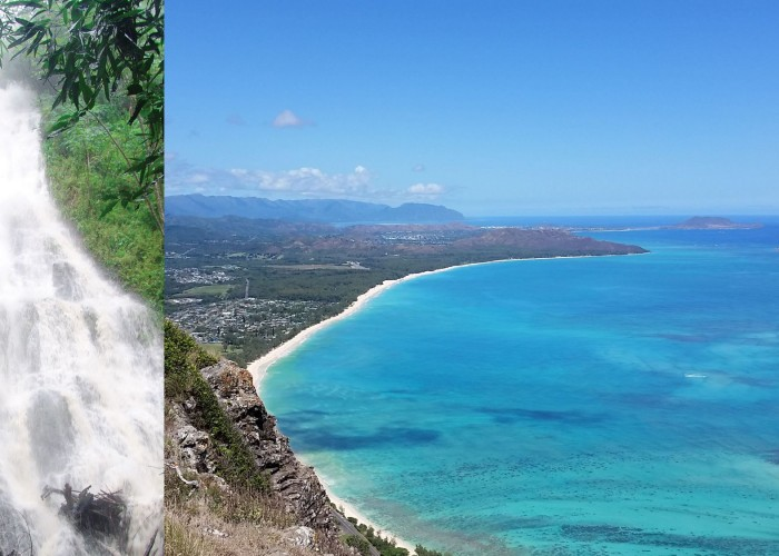 Exclusive Waterfall Hike And East Oahu Combo