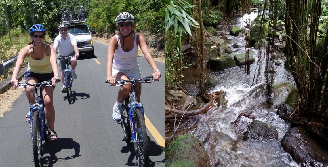 Downhill Bike & Ko'olau Waterfall Hike