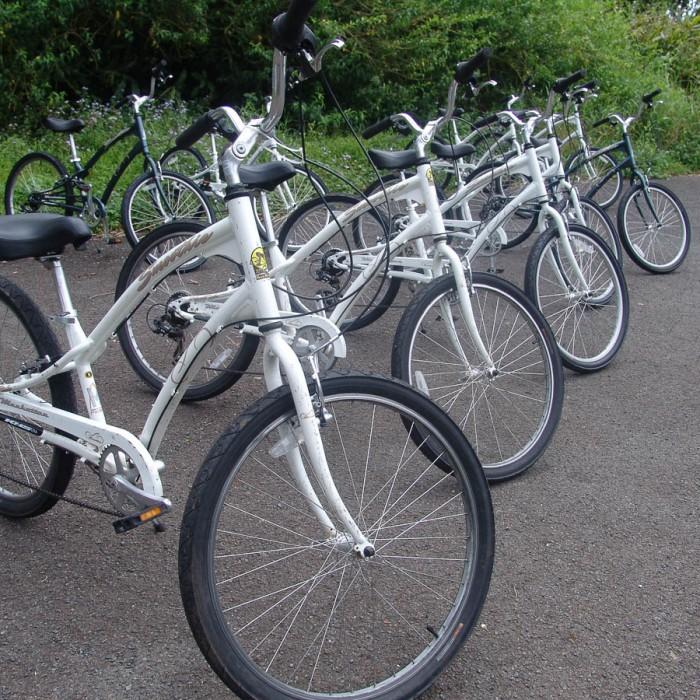 Hawaii-downhill-bike-7