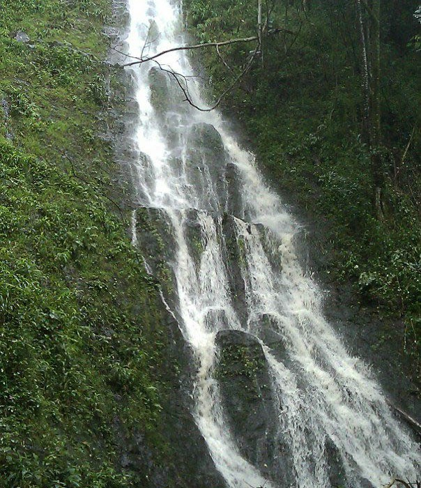 Hawaii-waterfall-hike-15