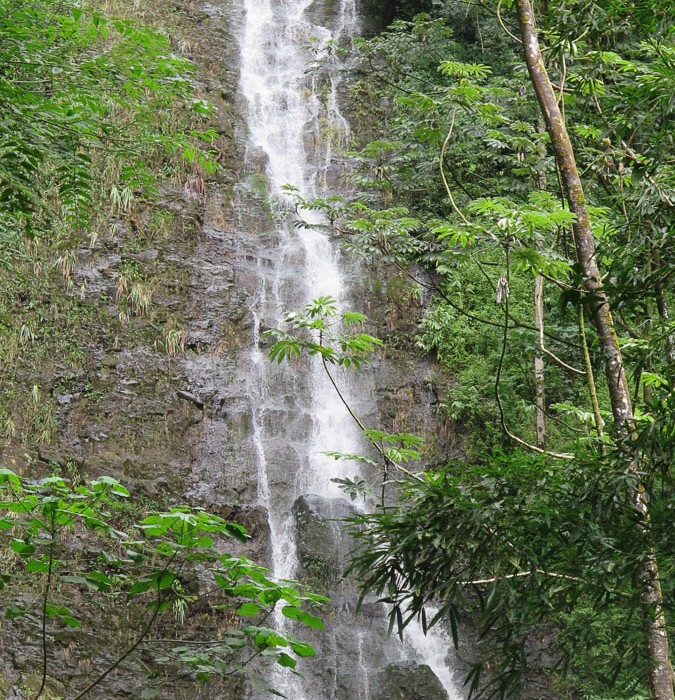 Hawaii-waterfall-hike-9